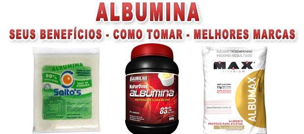 2fe786438 A albumina é uma proteína encontrada em alimentos de origem animal e em algumas  plantas