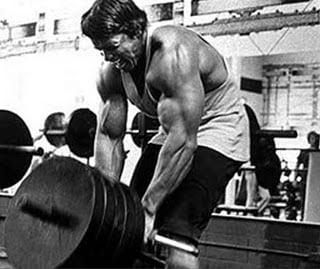 series treino treinamento costas arnold schwarzenegger