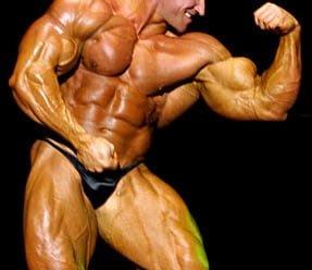 fibras musculares fisiculturistas