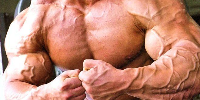10 Dicas de como aumentar a vascularização
