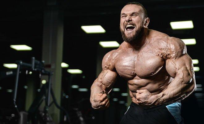 vasodilatadores músculos oxido nítrico pump