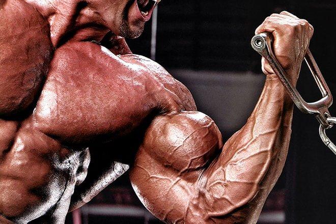 treino de braços ganhar músculos