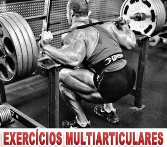 Exercícios multiarticulares