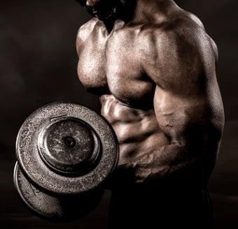principios do treinamento de força a adaptação