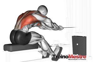 Remada Baixa: Execução correta, músculos e 4 erros cometidos