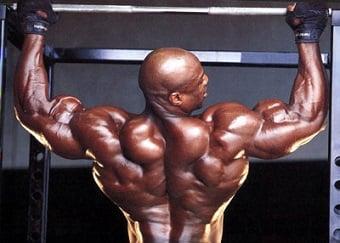 estimulo indireto biceps e triceps treino