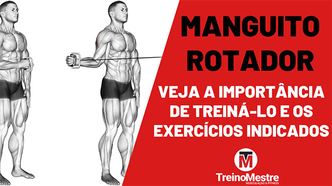 manguito rotador exercícios