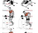 Barras paralelas – Execução correta e ativação muscular
