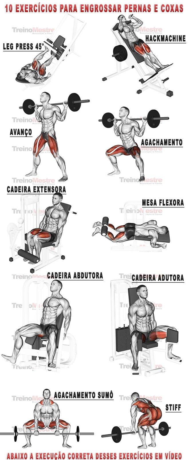 Treino de Pernas - Exercícios para pernas