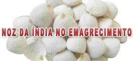 noz da india emagrece efeitos colaterais como usar