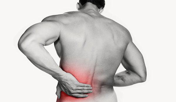 manter a sua coluna saudavel fazendo musculacao