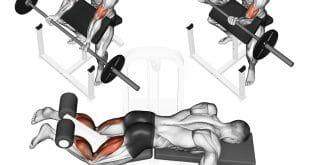 Método Agonista Antagonista na musculação