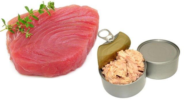 atum benefícios dieta