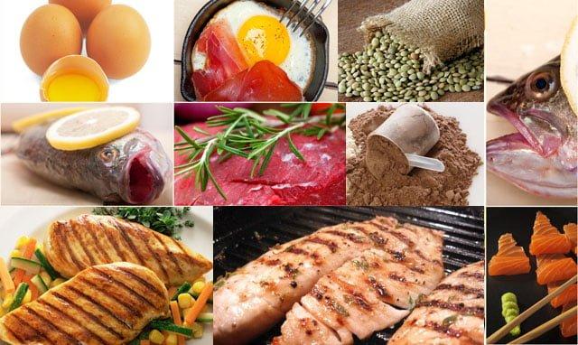 Proteínas - alimentos ricos para ganhar massa muscular