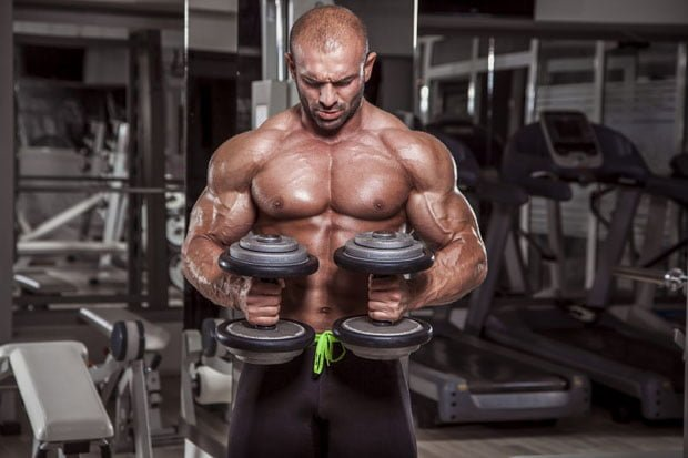 lateralidade na musculação