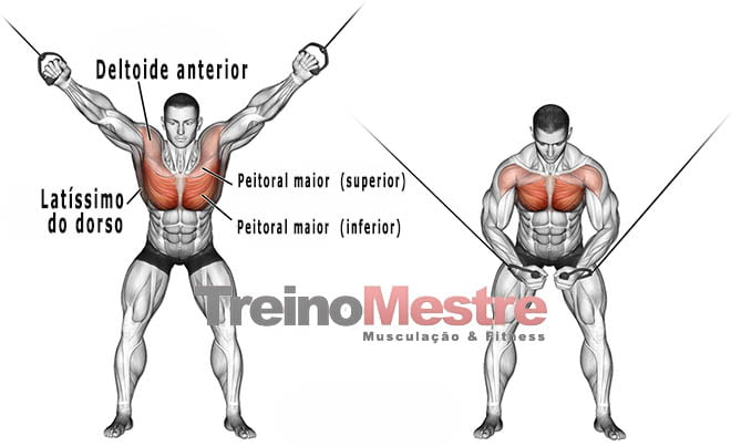 crossover músculos trabalhados
