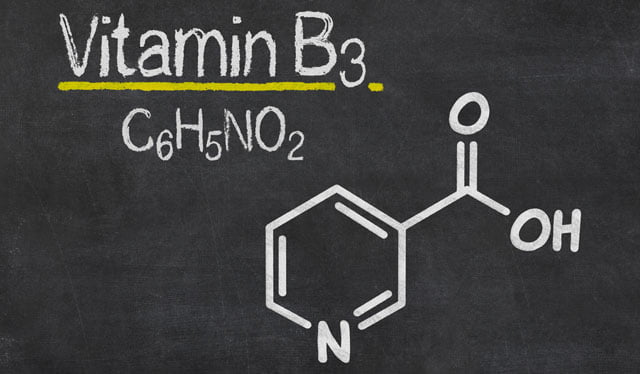fontes alimentos niacina vitamina b3