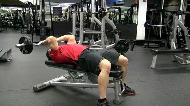triceps testa execucao correta
