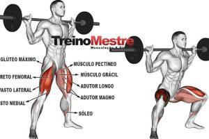 Agachamento Sumô: Para que serve, Músculos e Execução correta