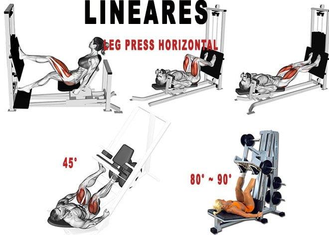 tipos leg press modelos variações lineares