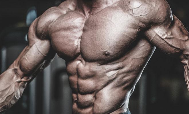 Músculos hipertrofiados