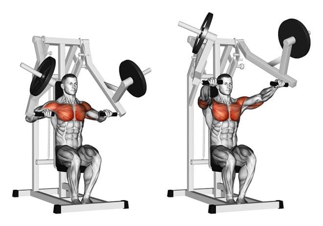 Diferentes métodos de treino