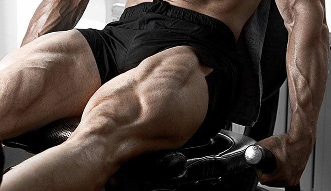 Cadeira extensora para quadríceps