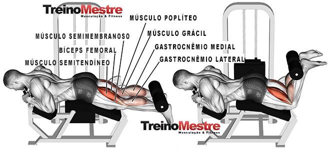 músculos trabalhados solicitados
