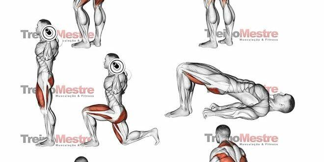 Exercícios para Glúteos, Os 8 Melhores para ter GRANDES RESULTADOS!