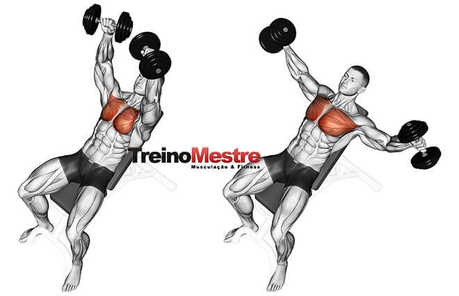 treino de musculação que funciona
