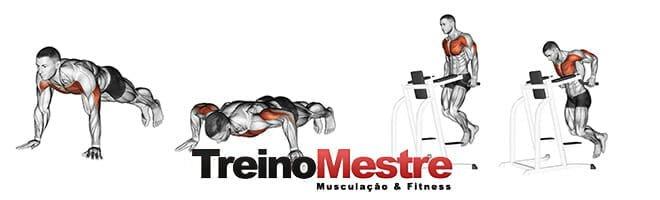 flexão de braço e paralelas exercícios para peito