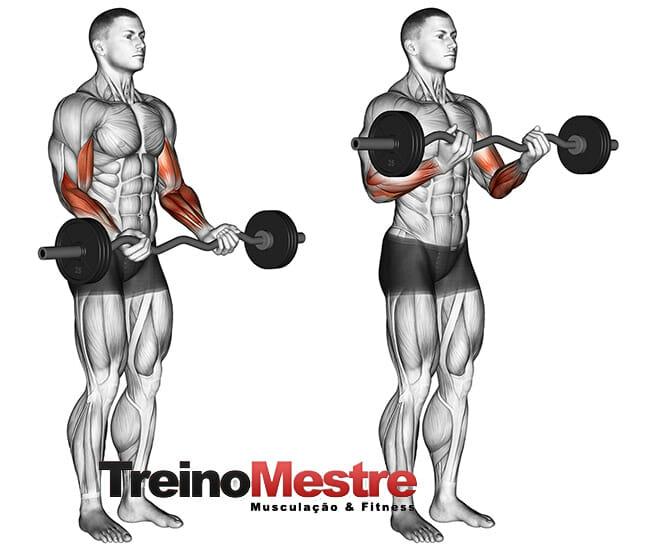 Rosca 21s do Arnold para bíceps