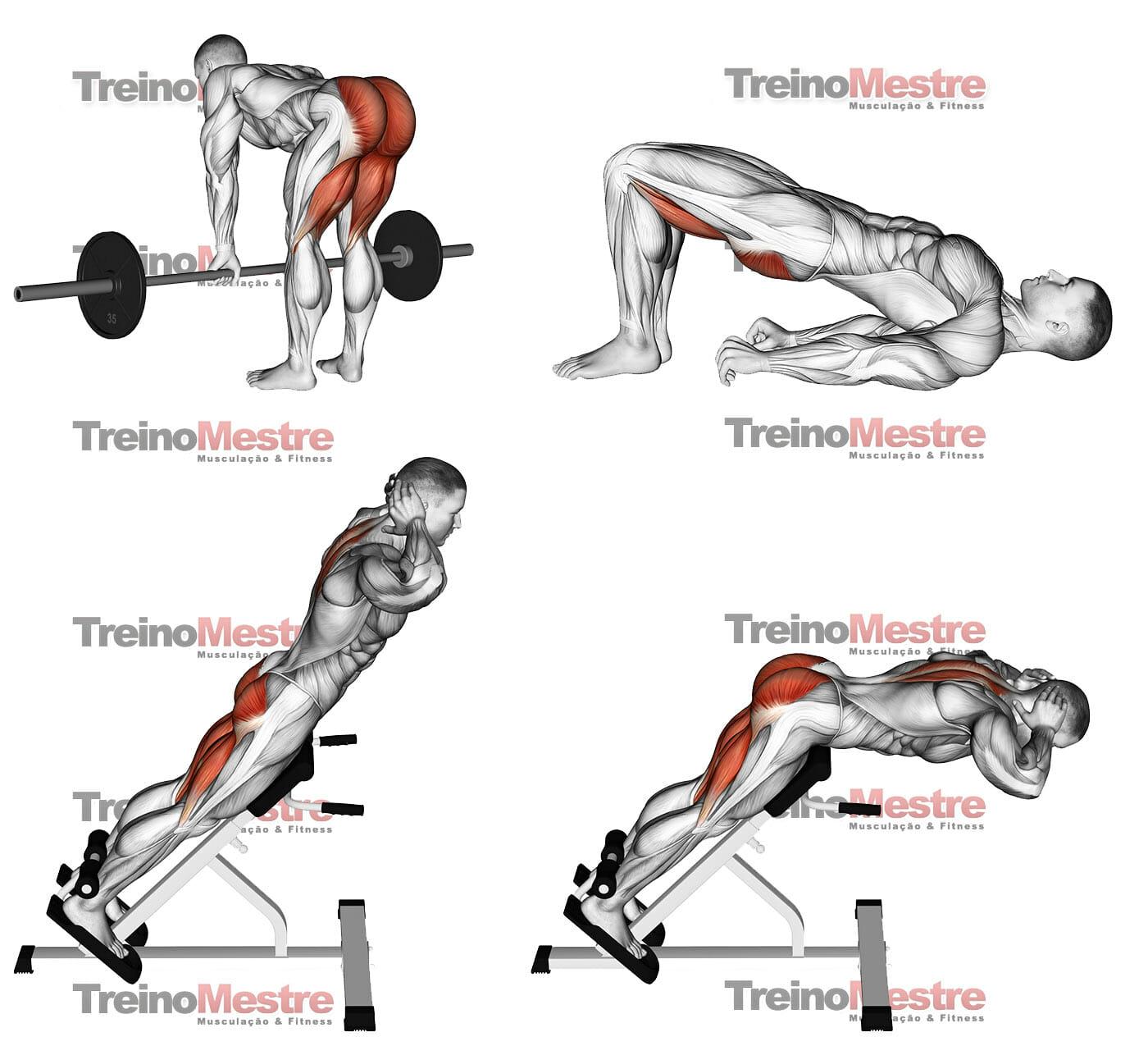 Como fortalecer a lombar (exercícios com e sem aparelhos