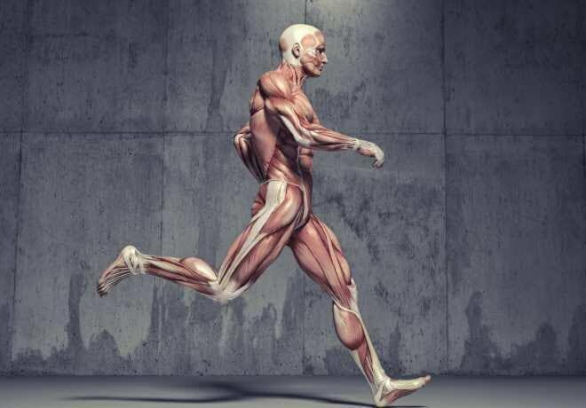 Fortalecimento de core para corredores