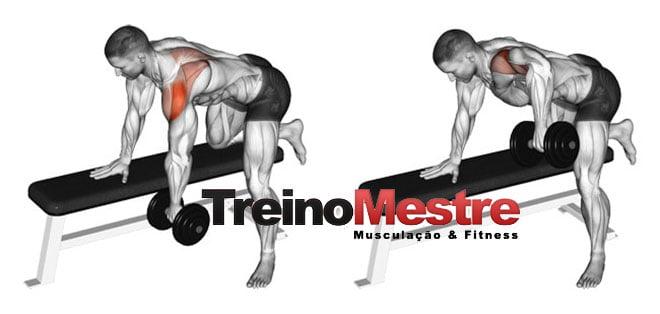 exercício ombro e costas remada