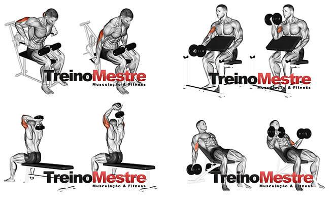 treino curto e eficiente para bíceps e tríceps