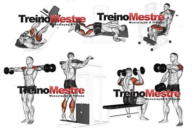 Treino de pernas e ombros exercícios
