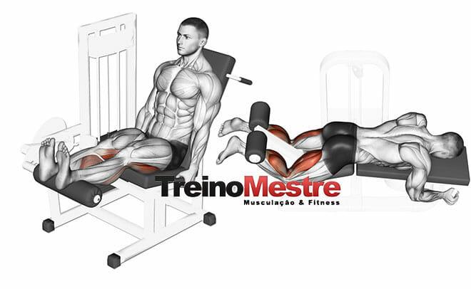 Cadeira flexora e a mesa flexora - Diferenças