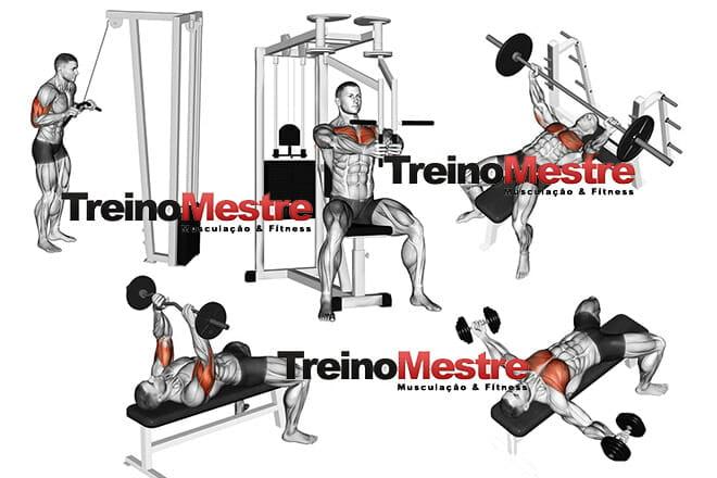 Treino de peito e tríceps - ABC