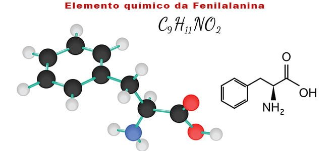 elemento químico da Fenilalanina