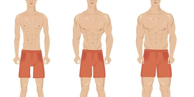 Endomorfo, 9 dicas de treino e dieta para ter muito mais resultados!