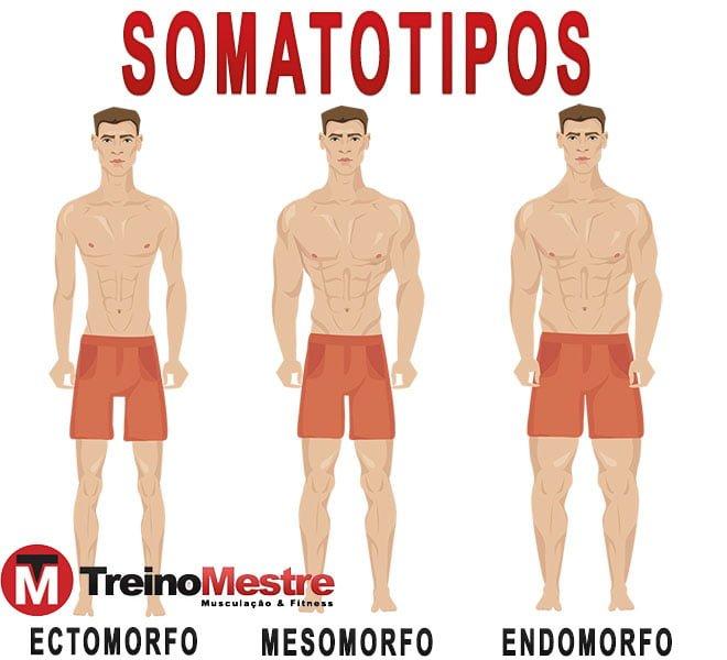 Endomorfo Somatotipos