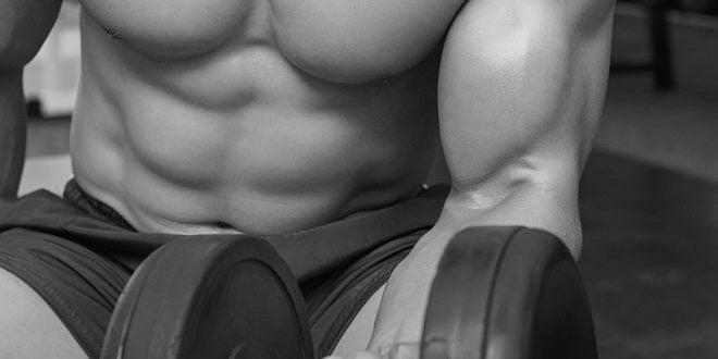anabolismo dicas para aumentar