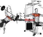 Pós-exaustão, o que é e como usar em seu treino?