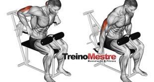 quebrar o plato crescimento muscular braços