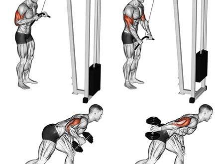 treino tríceps principais erros