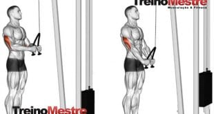 Treino R100 método repetições