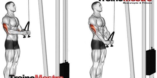 Treino R100 (Método das 100 repetições), como usar em seu treino?