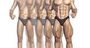 anabolismo e catabolismo diferenças
