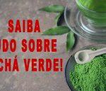 Chá Verde Emagrece? Quais os Benefícios?【VEJA COMO FAZER!】